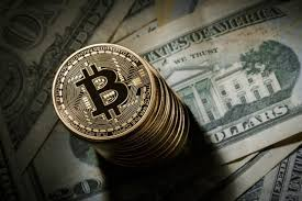 币圈处境已大变?奠定币日交易价值超比特币 逐步占有主从